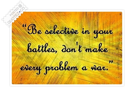 Don't Make Every Problem A War Quote
