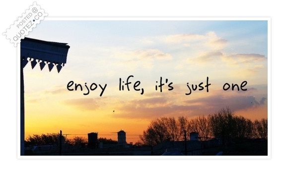 Enjoy Life It's Just One Quote
