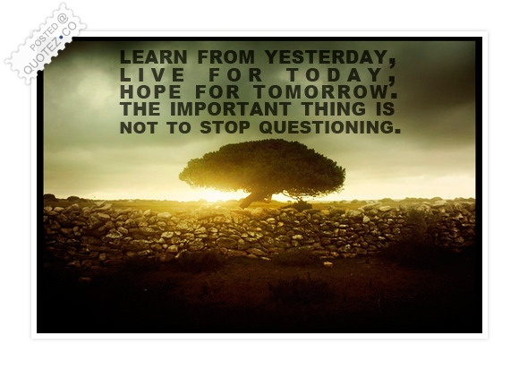 Never Stop Questioning Quote