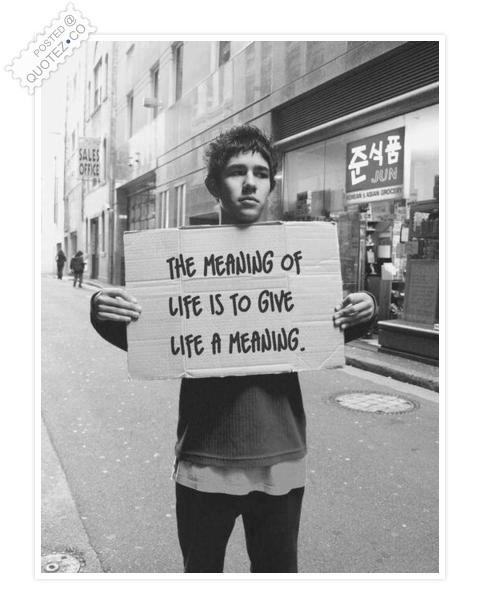 The Meaning Of Life Quote