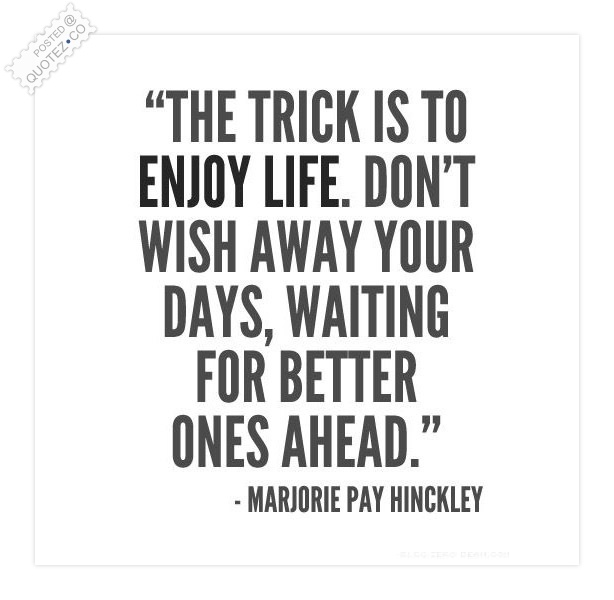 The Trick Is To Enjoy Life Quote