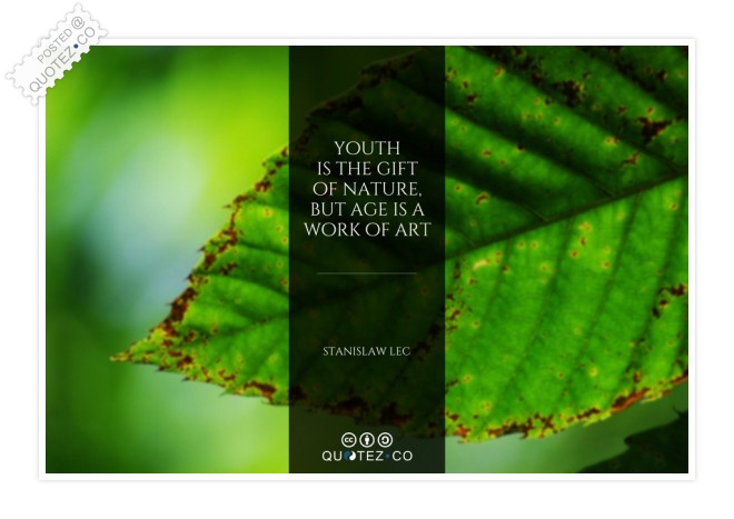 Age Is A Work Of Art Quote
