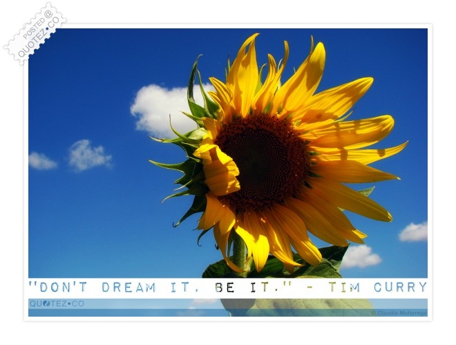 Don't Dream It Be It Quote