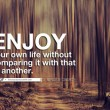 Enjoy Your Own Life Quote
