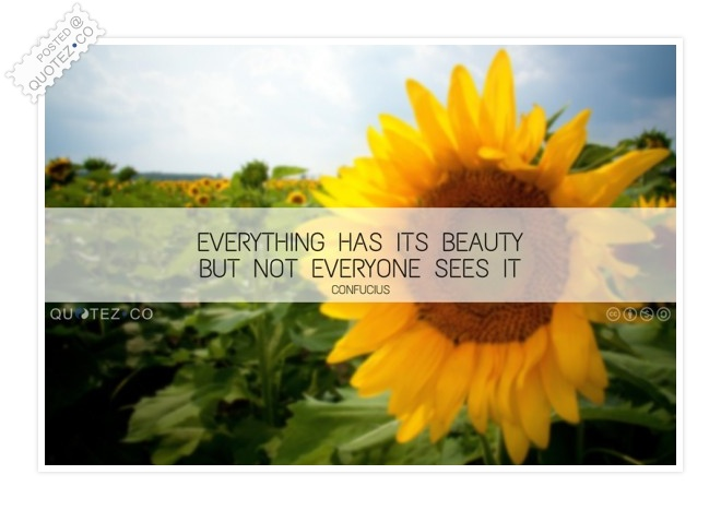 Everything Has Its Beauty Quote