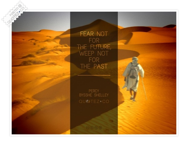 Fear Not For The Future Quote