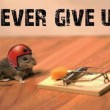 Funny Never Give Up Quote