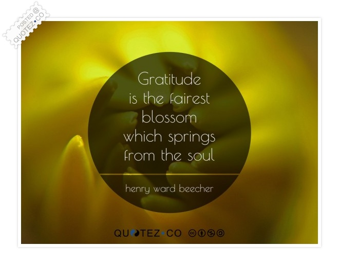 Gratitude Is The Fairest Blossom Quote