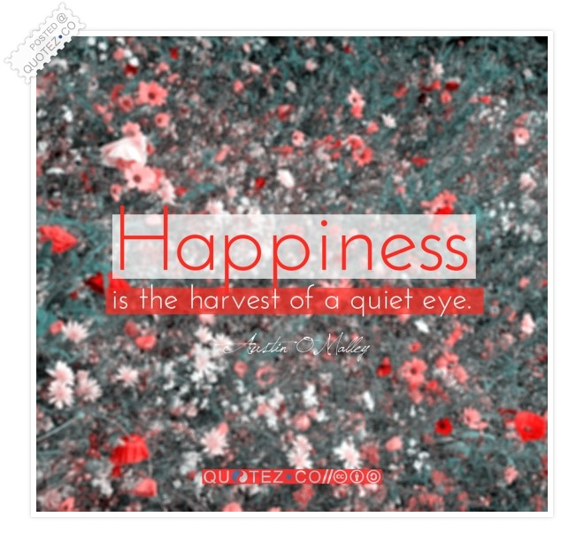 Happiness Is The Harvest Of A Quiet Eye Quote