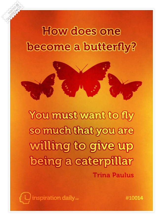 How To Become A Butterfly Quote