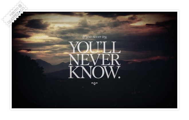 If You Never Try You Will Never Know Quote