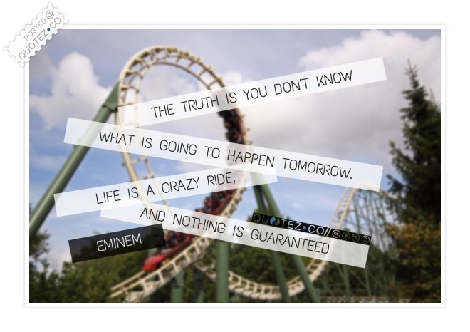 Life Is A Crazy Ride Quote