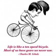 Life Is Like A Ten Speed Bicycle Quote