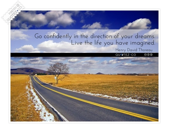 Live The Life You Have Imagined Quote