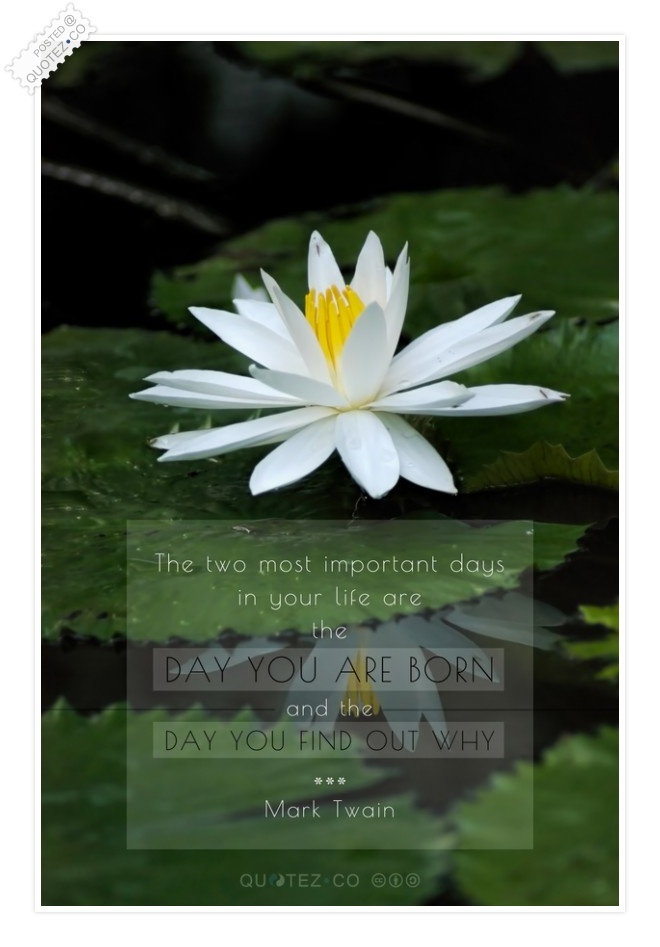 Most Important Days In Your Life Quote