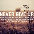 Never Give Up Quote
