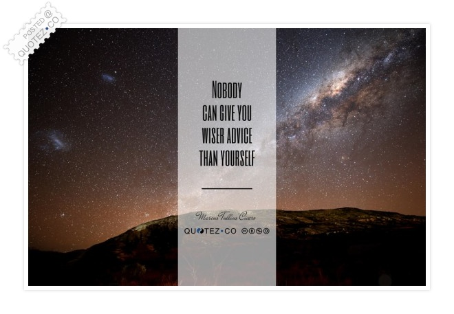 Nobody Can Give You Wiser Advice Than Yourself Quote