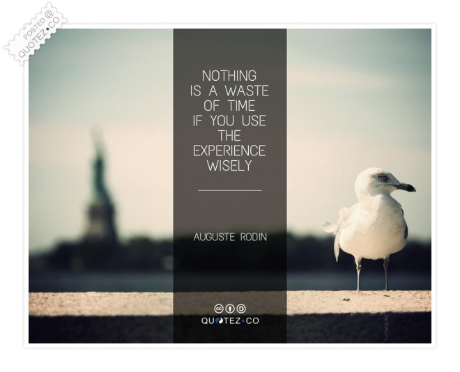 Nothing Is A Waste Of Time Quote