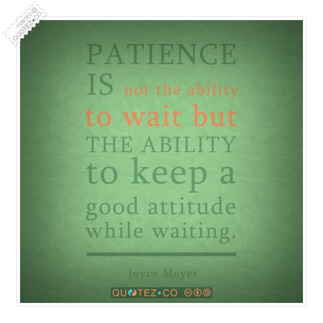 Patience Is An Ability Quote