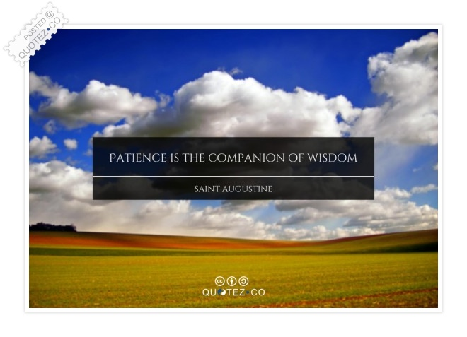 Patience Is The Companion Of Wisdom Quote
