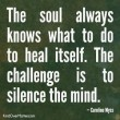 Soul Always Knows To Heal Itself Quote