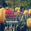 No Beauty Without Strangeness Quote