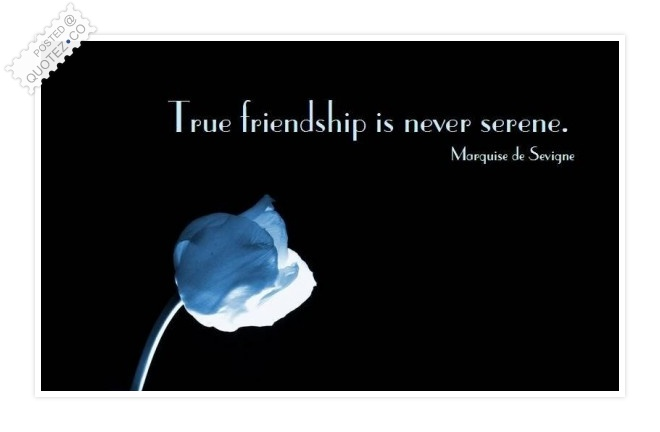 True Friendship Is Never Serene Quote