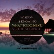 Wisdom Is Knowing What To Do Next Quote