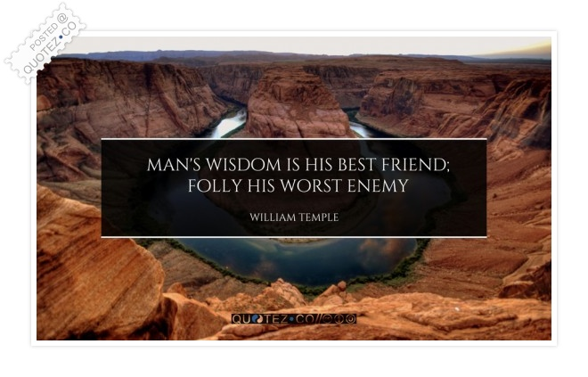 Wisdom Is The Best Friend Quote