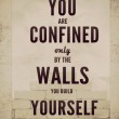 You Are Confined Only By The Walls You Build Quote