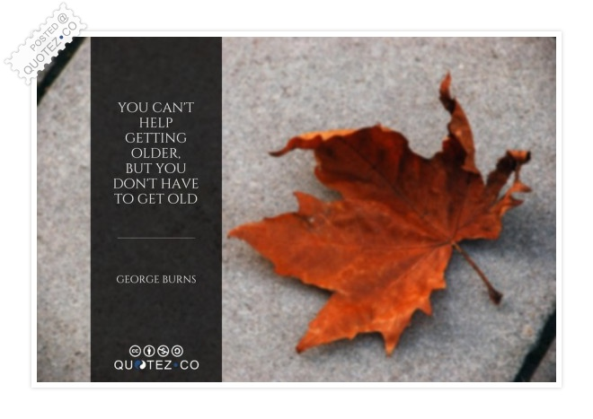You Can't Help Getting Older Quote
