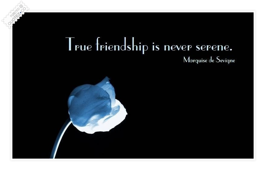 True friendship is never serene.