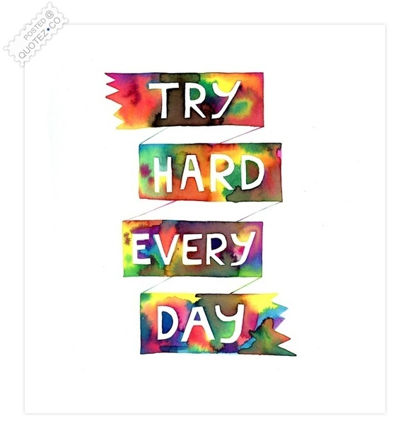 Try Hard Every Day Quote
