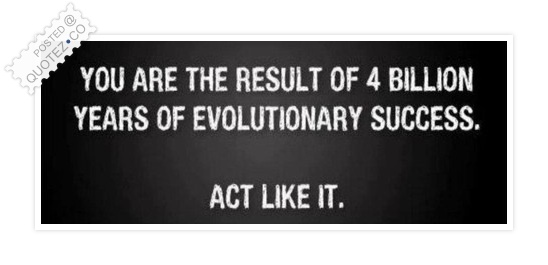 You Are The Result Of 4 Billion Years Quote