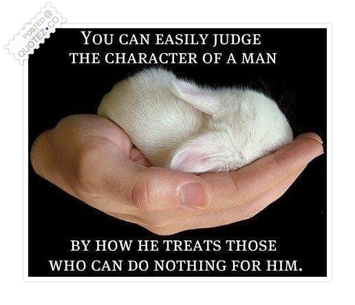 You Can Easily Judge The Character Of A Man Quote