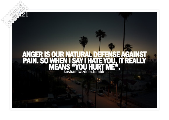 You Hurt Me Quote