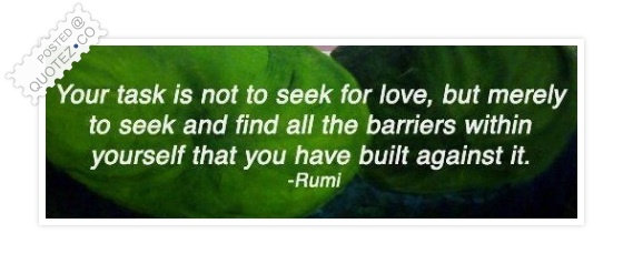 Your Task Is Not To Seek For Love Quote